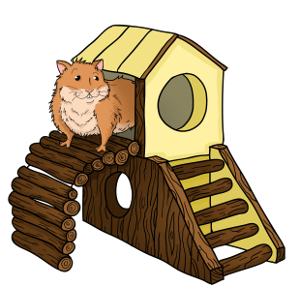 The Hamster House