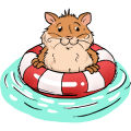 Can hamsters swim?