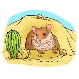 Are there wild hamsters?